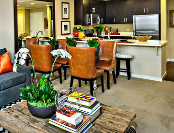 Foster City apartment with designer-selected, cut pile carpeting